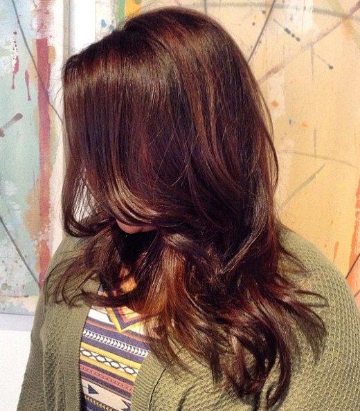 Mahagoni Braune Haarfarbe 3